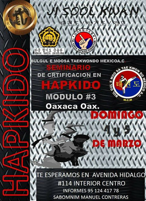 Seminario de Certificación en Hapkido en Oaxaca