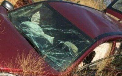 Accidente carretero en el Istmo