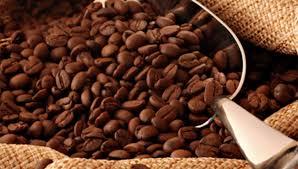 Pluma Hidalgo llevará a cabo la Expo Feria del Café Pluma