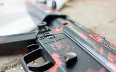Sedena exige devolver armas alemanas ilegales