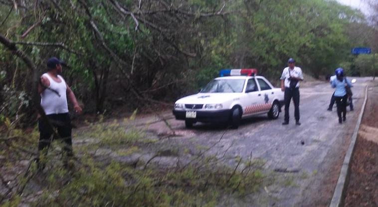 Por lluvias se mantiene operativo en Oaxaca: CEPCO