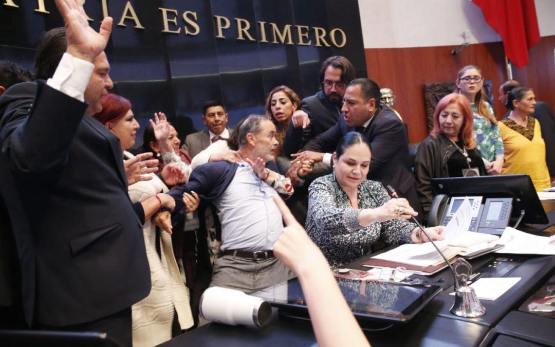 Elección de Rosario Piedra a la CNDH es incorrecta en forma y fondo: Gustavo Madero