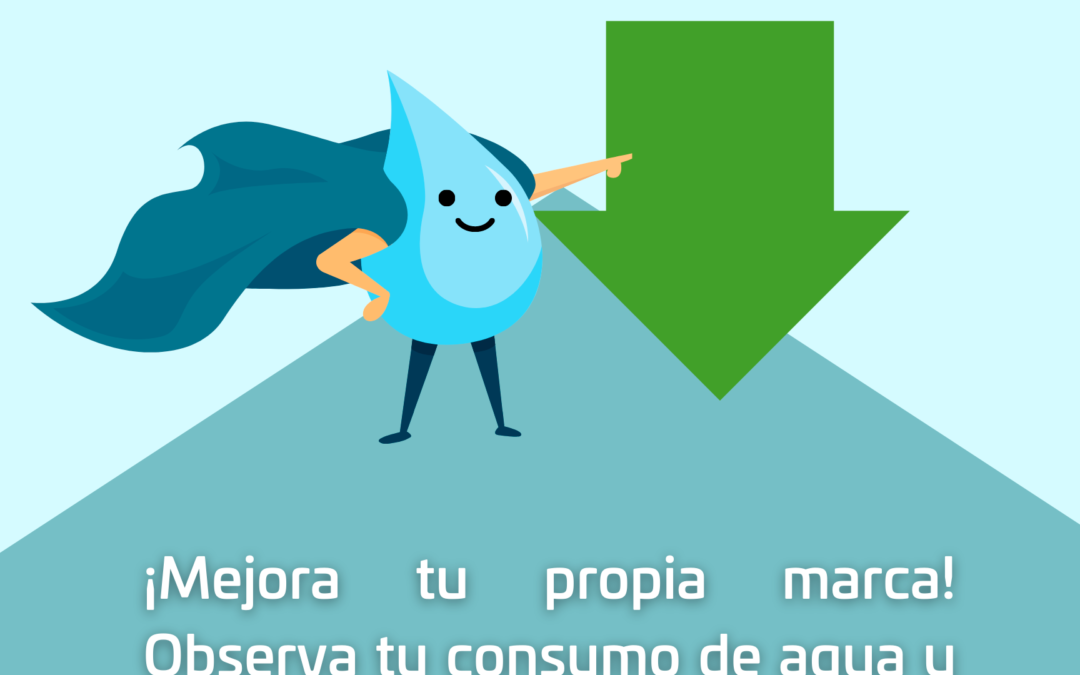 Emite SAPAO recomendaciones para hacer uso eficiente del agua potable