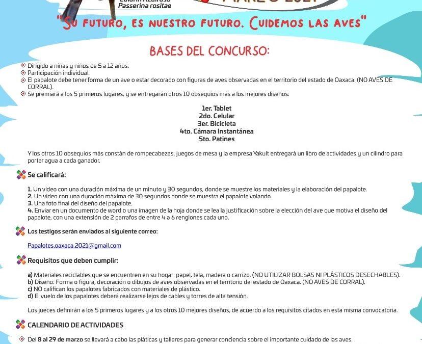 Niñez de Oaxaca echará a volar su imaginación en el concurso de papalotes de la Semaedeso